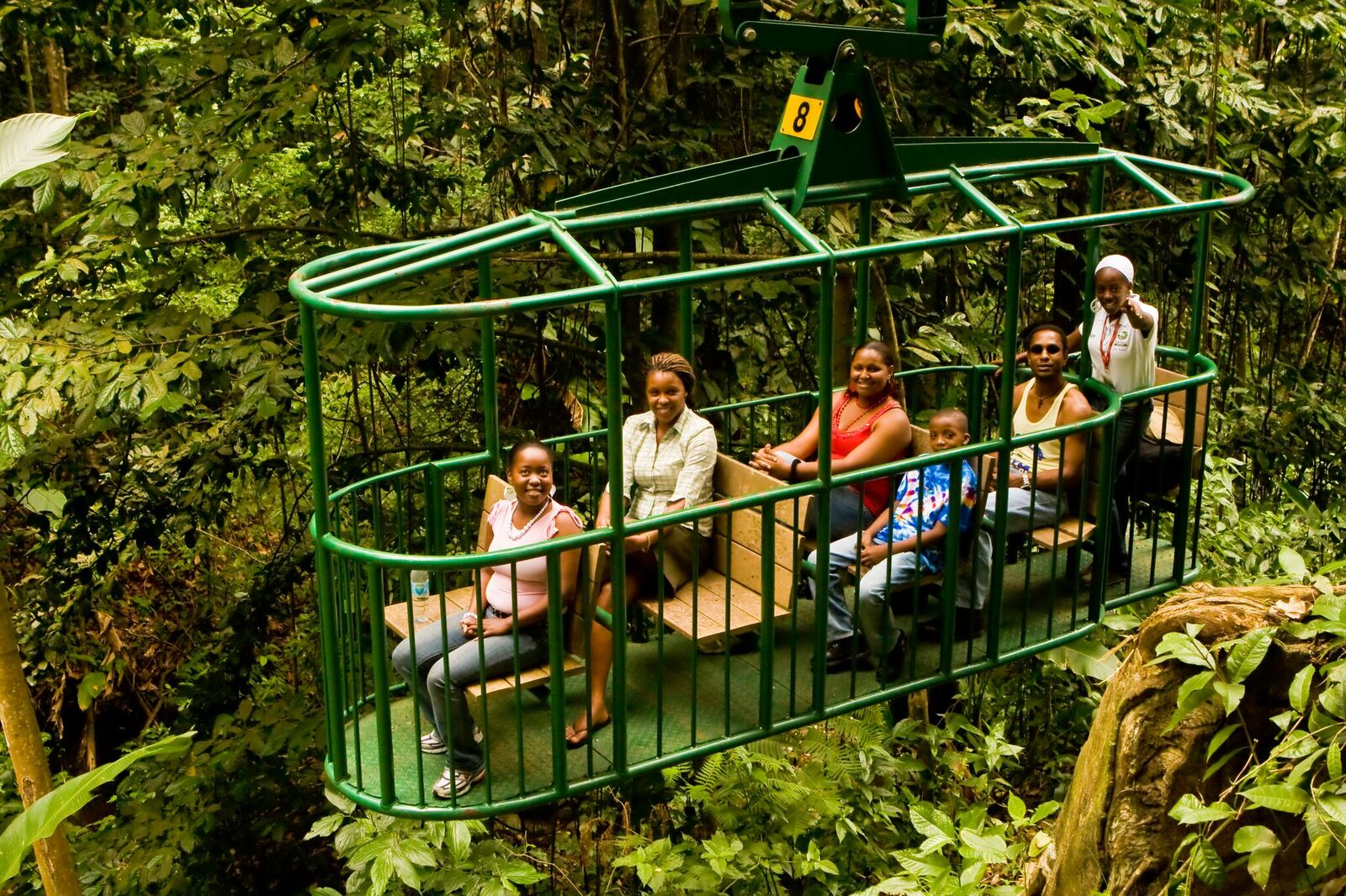 Tree Top Canopy Adventure & Tree Top Canopy Adventure u2013 Holiday Adventure St. Lucia